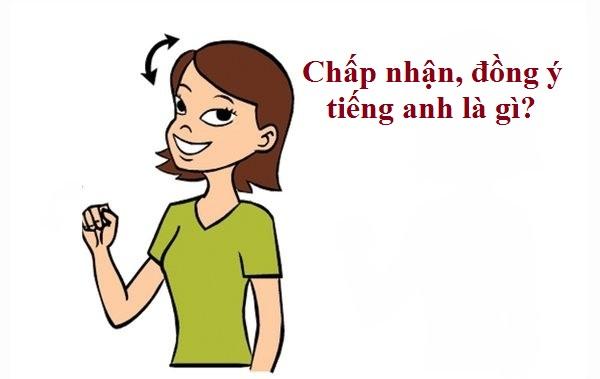 chap-nha-dong-y-tieng-anh-la-gi