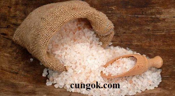 phen-chua-mua-o-dau-gia-bao-nhieu-1kg