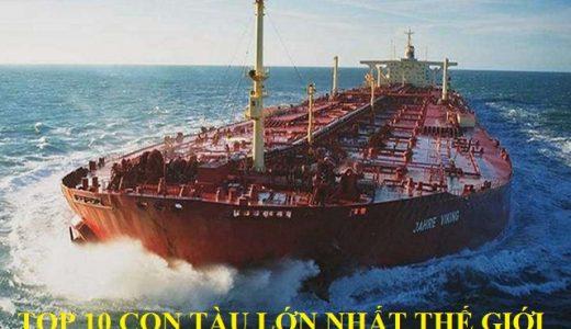 top-con-tau-lon-nhat-the-gioi